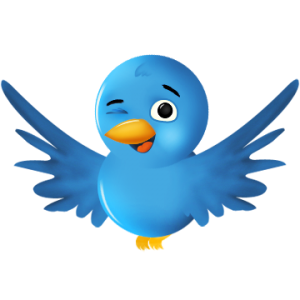 Twitter wink 300x300 40 Tried and Tested Twitter Tips